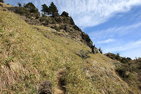 浅間山 草滑り