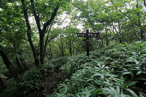 掃部ヶ岳 湖畔の宿記念公園