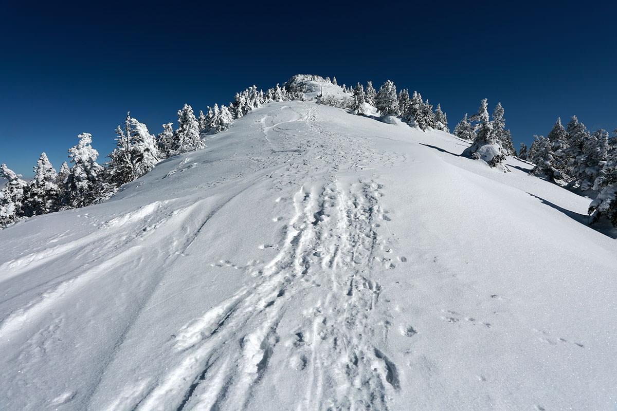 2月の登山