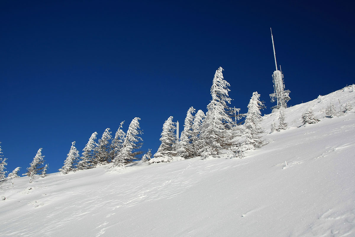 1月の登山
