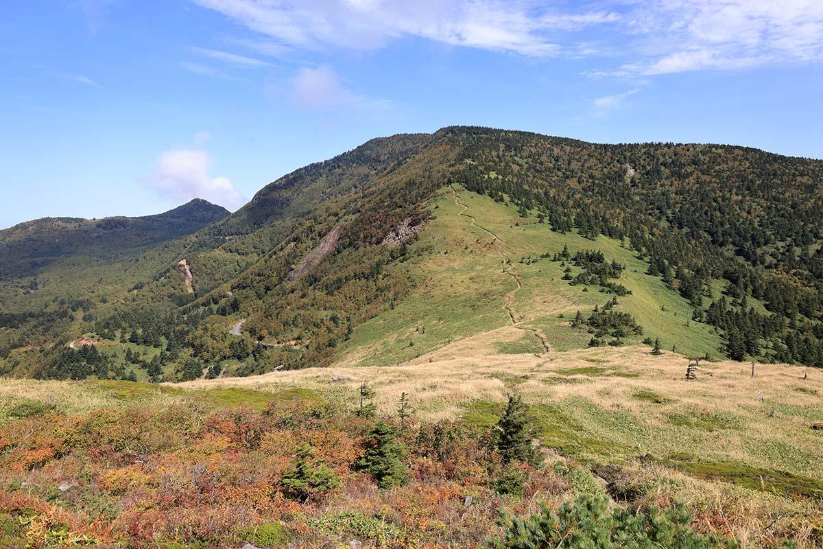 2019〜2020年のココ1年間で見られた登山記事