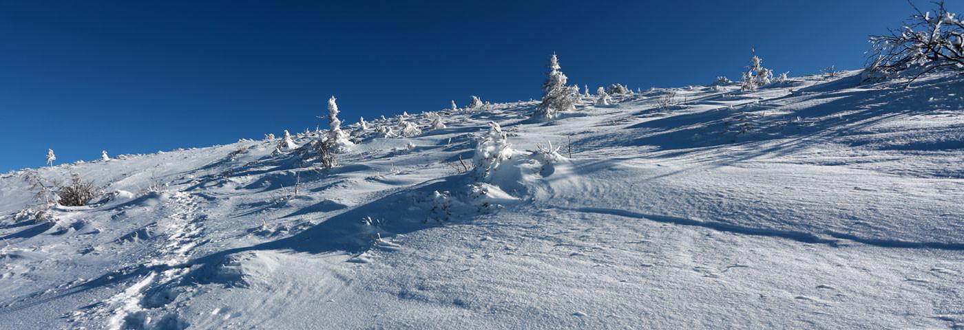 冬山登山特集