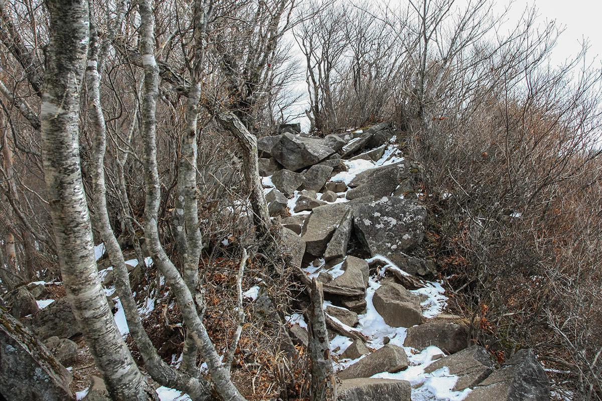【赤城山】登山百景-右側は切れ落ちた岩場