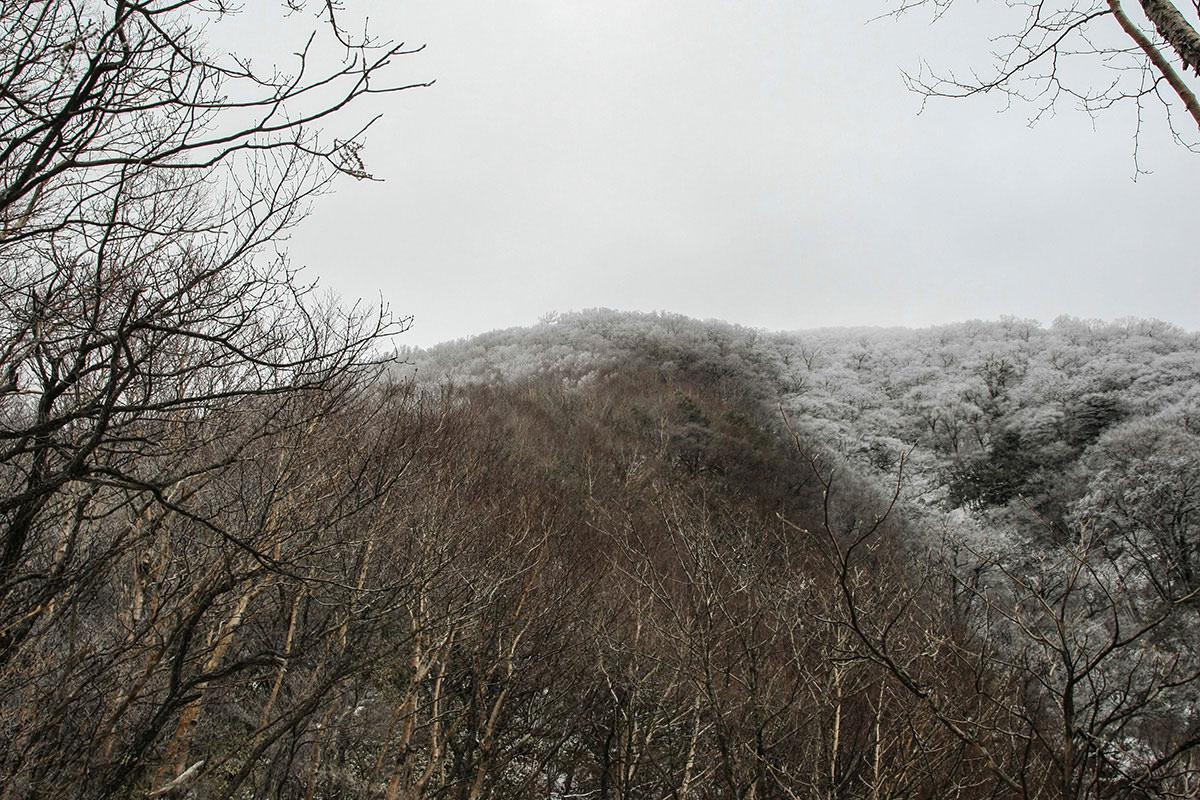 【赤城山】登山百景-山頂が白い