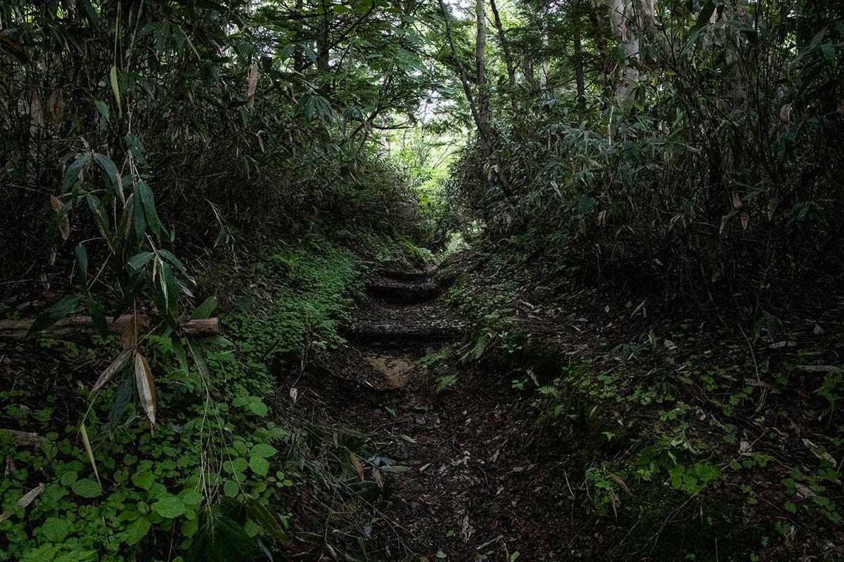 志賀高原赤石山-湿度タップリの中を歩く