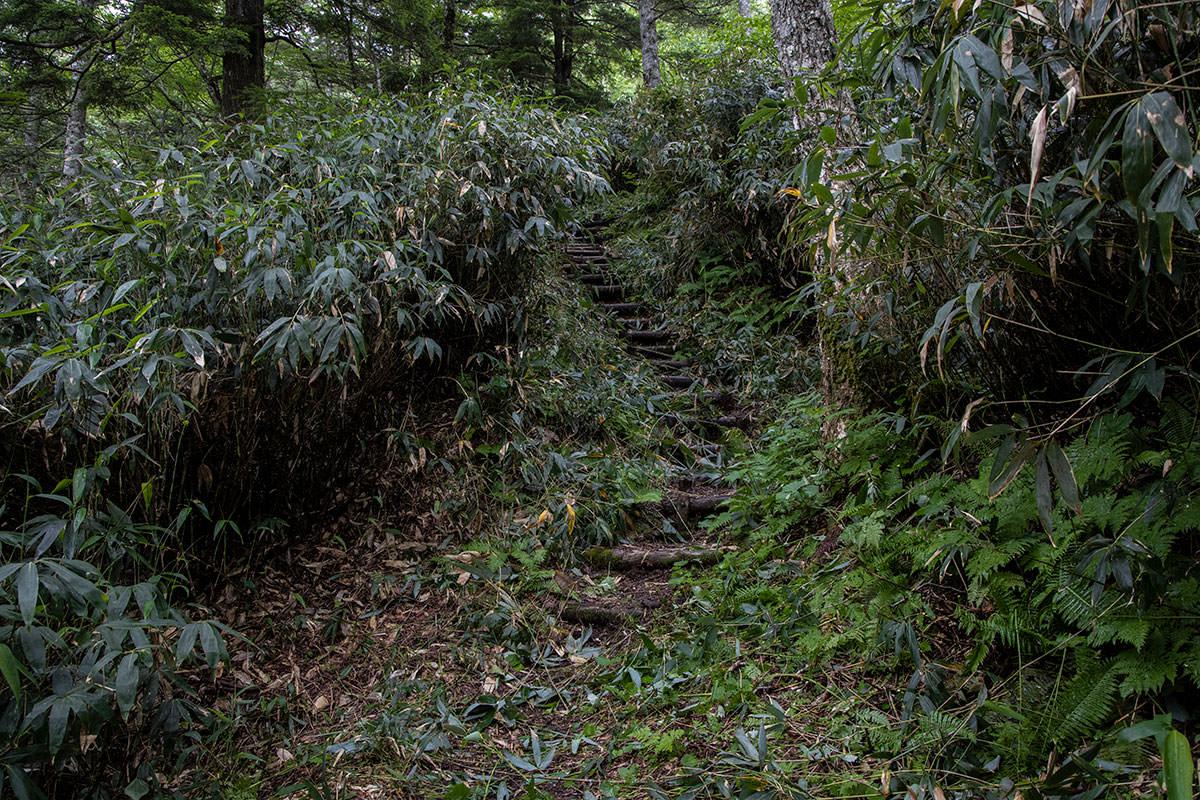 志賀高原赤石山-階段の連続が始まる