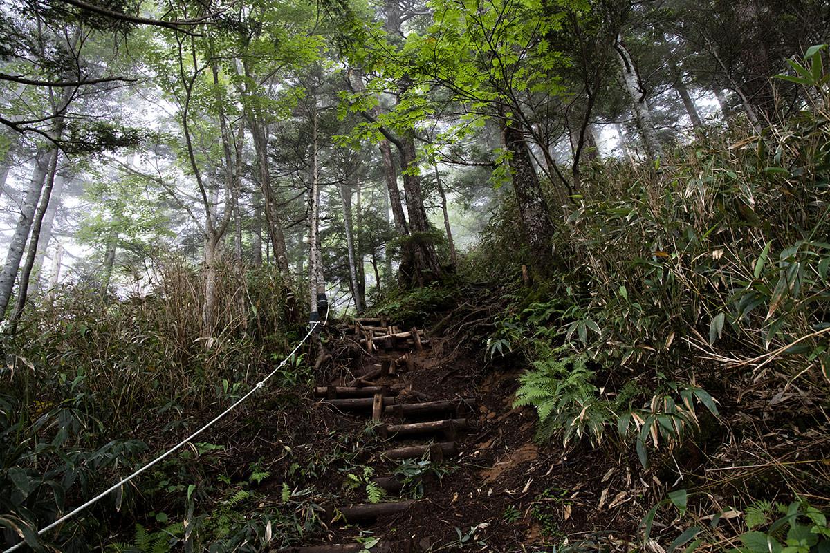 志賀高原赤石山-次々と階段でなかなか大変