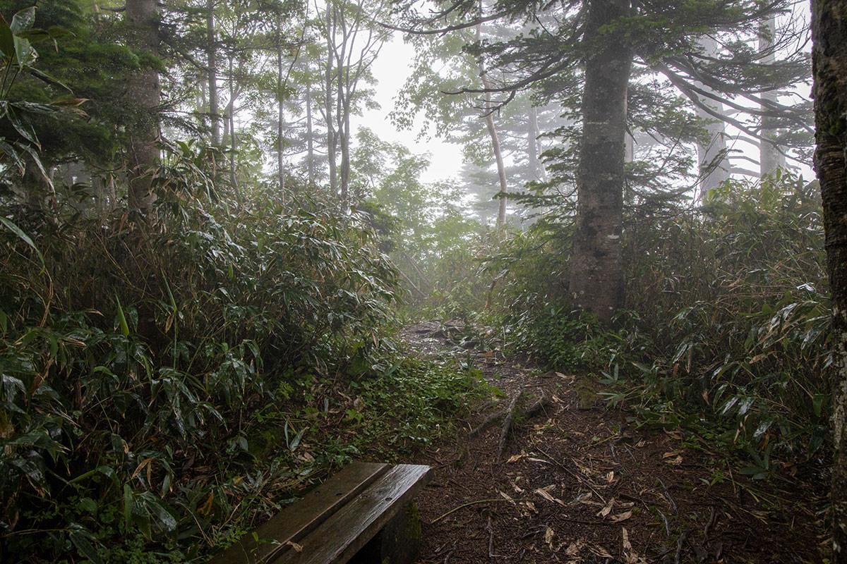 志賀高原赤石山-いよいよ雨が激しい