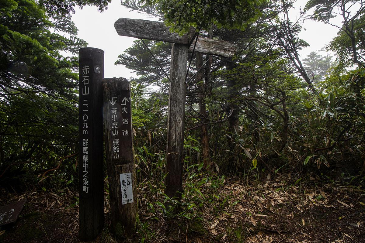 志賀高原赤石山-赤石山の山頂からは何も見えない