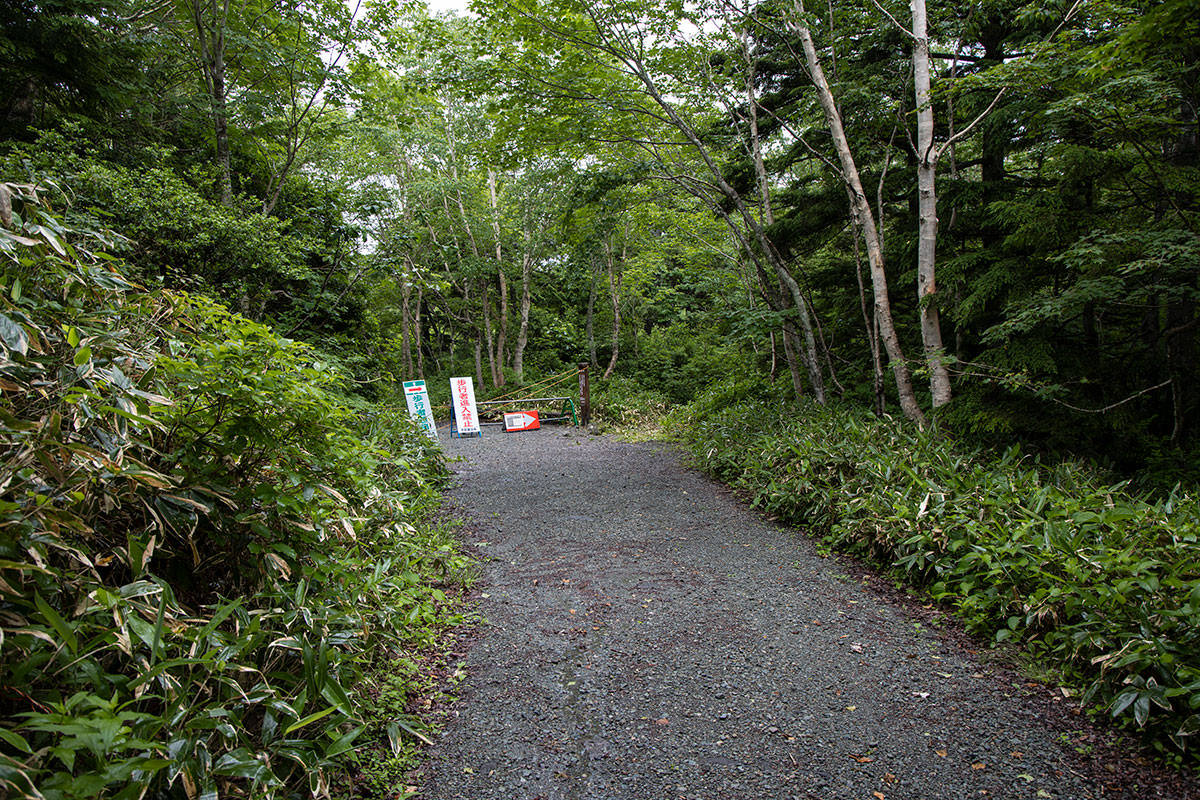 志賀高原赤石山-林道を戻る