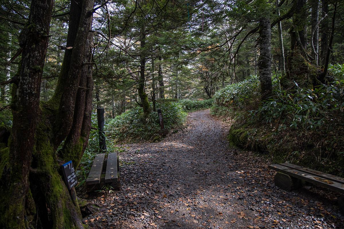 左は志賀山、右は四十八池