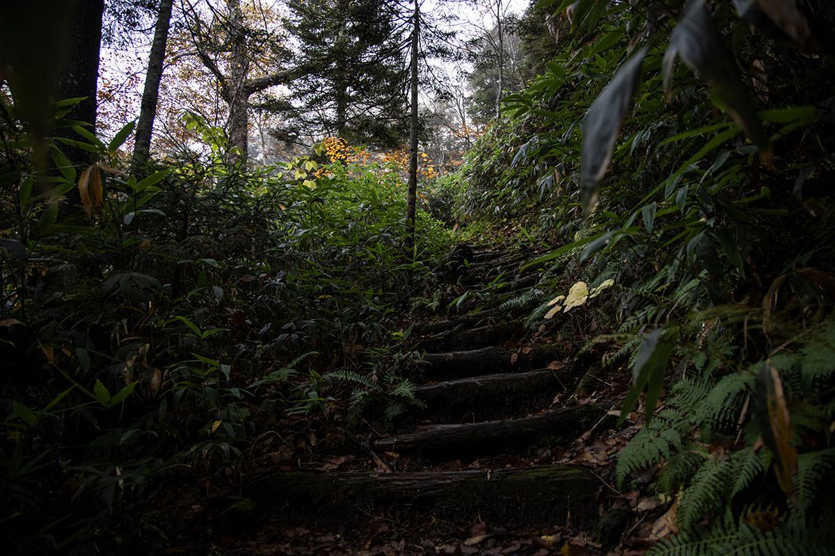 鉢山方面へは急登の木段