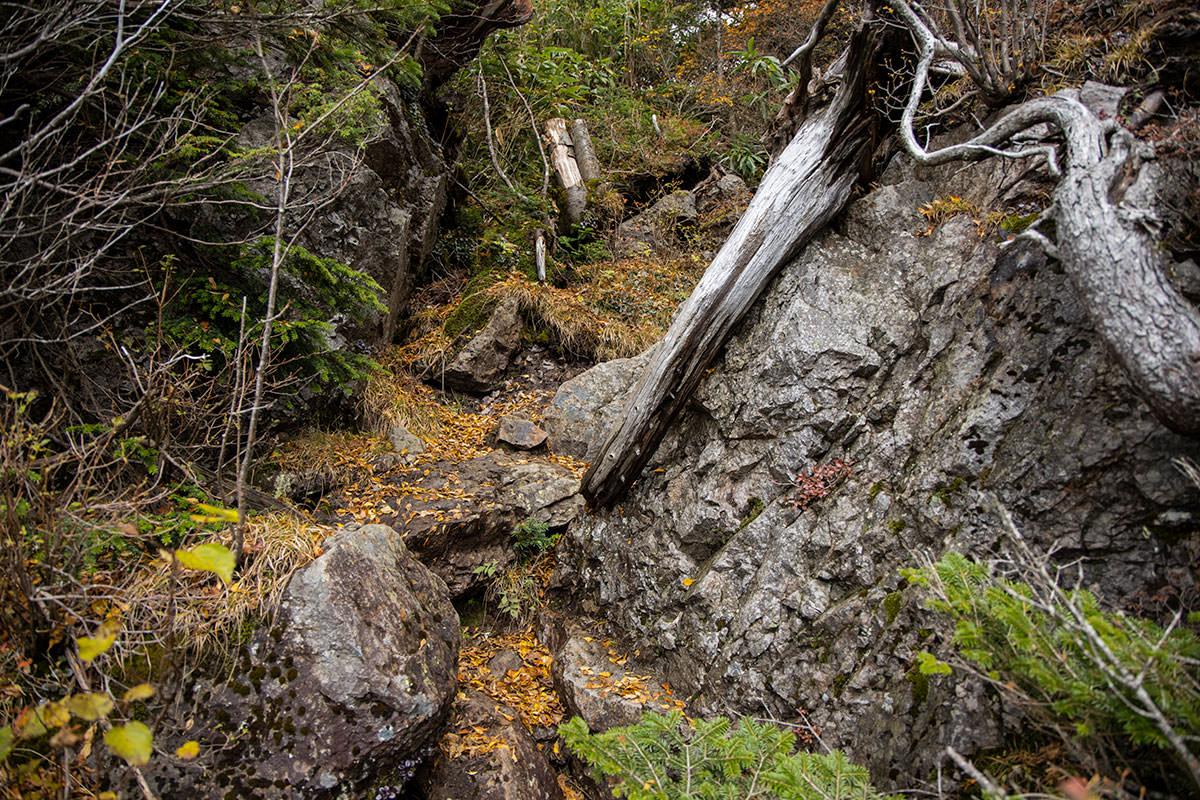 ザレ場から岩の段差を登る