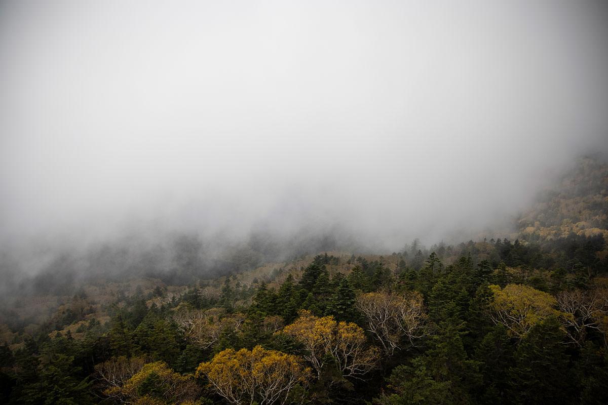大沼池を見下ろすけれど雲ばかり