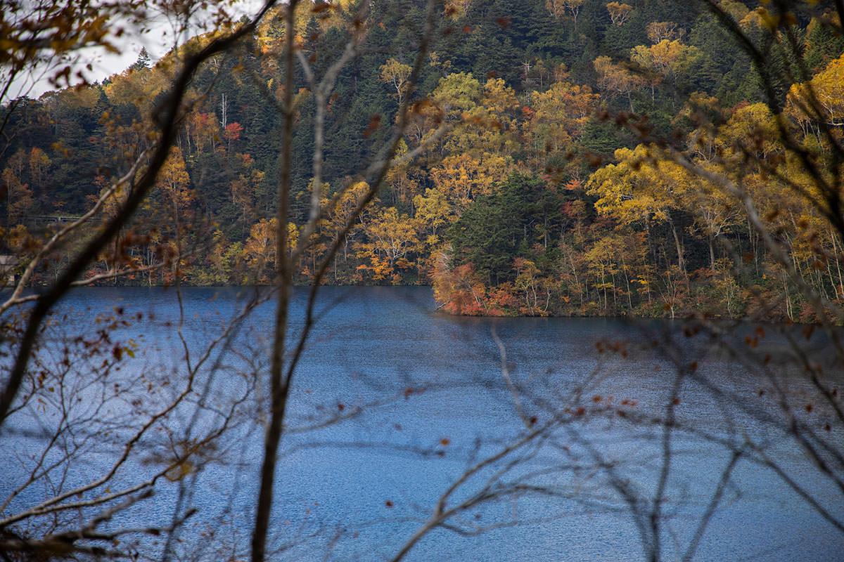 大沼池が青く見える