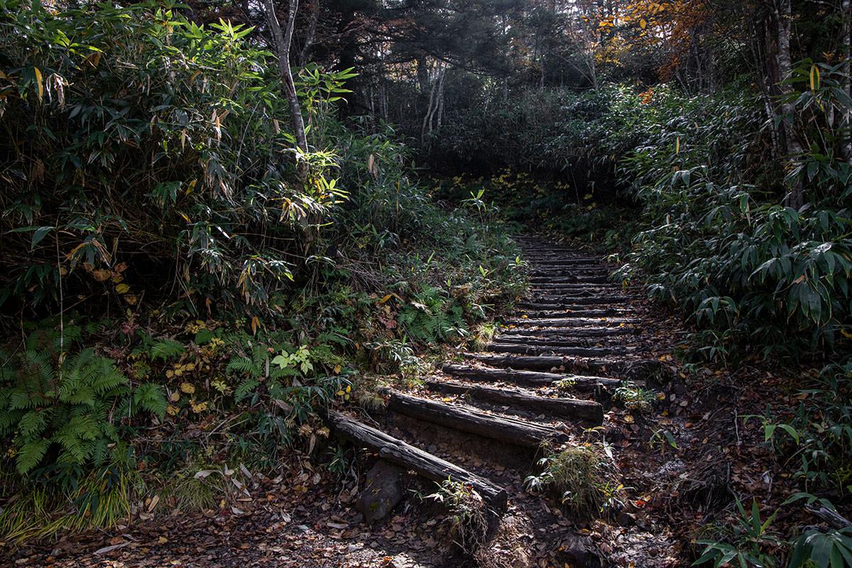 地味に階段が多い
