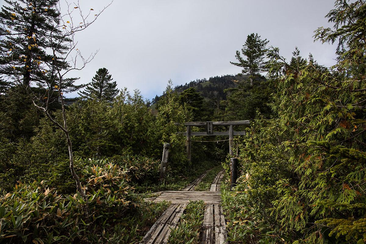 真っ直ぐ行くと志賀山、左は四十八池