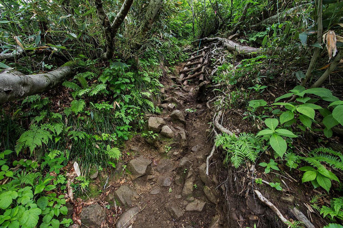 【雨飾山】登山百景-急な勾配を登る