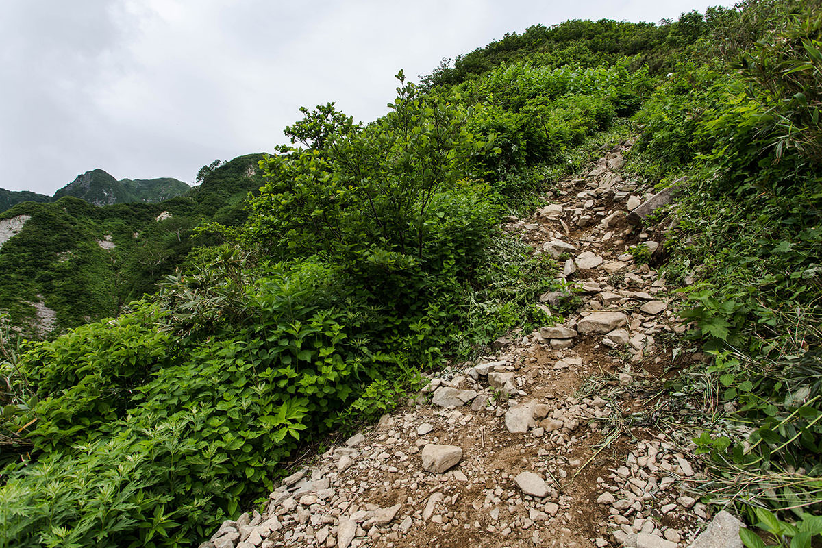 【雨飾山】登山百景-尾根に出た