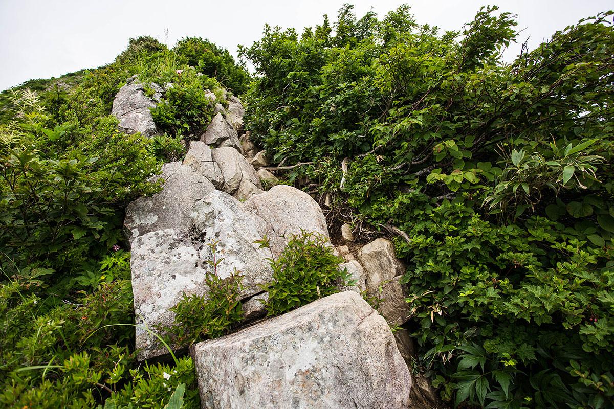 【雨飾山】登山百景-石の段差が高い