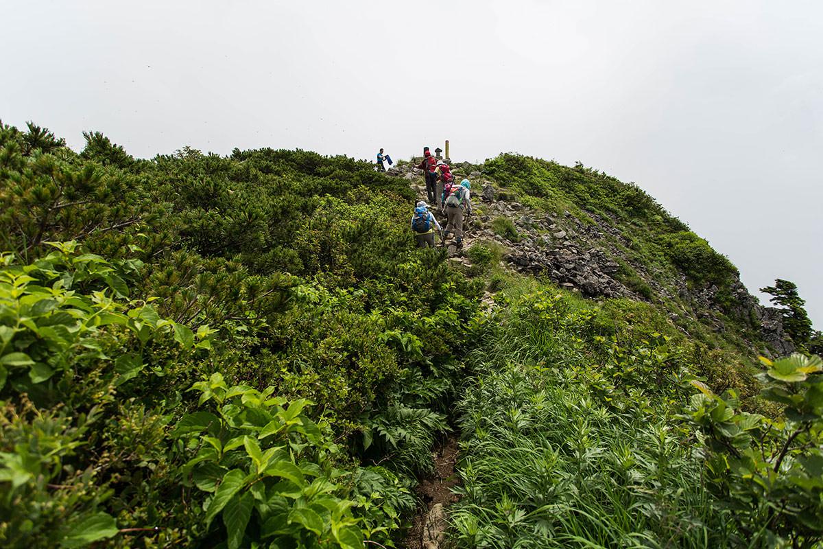 【雨飾山】登山百景-山頂部