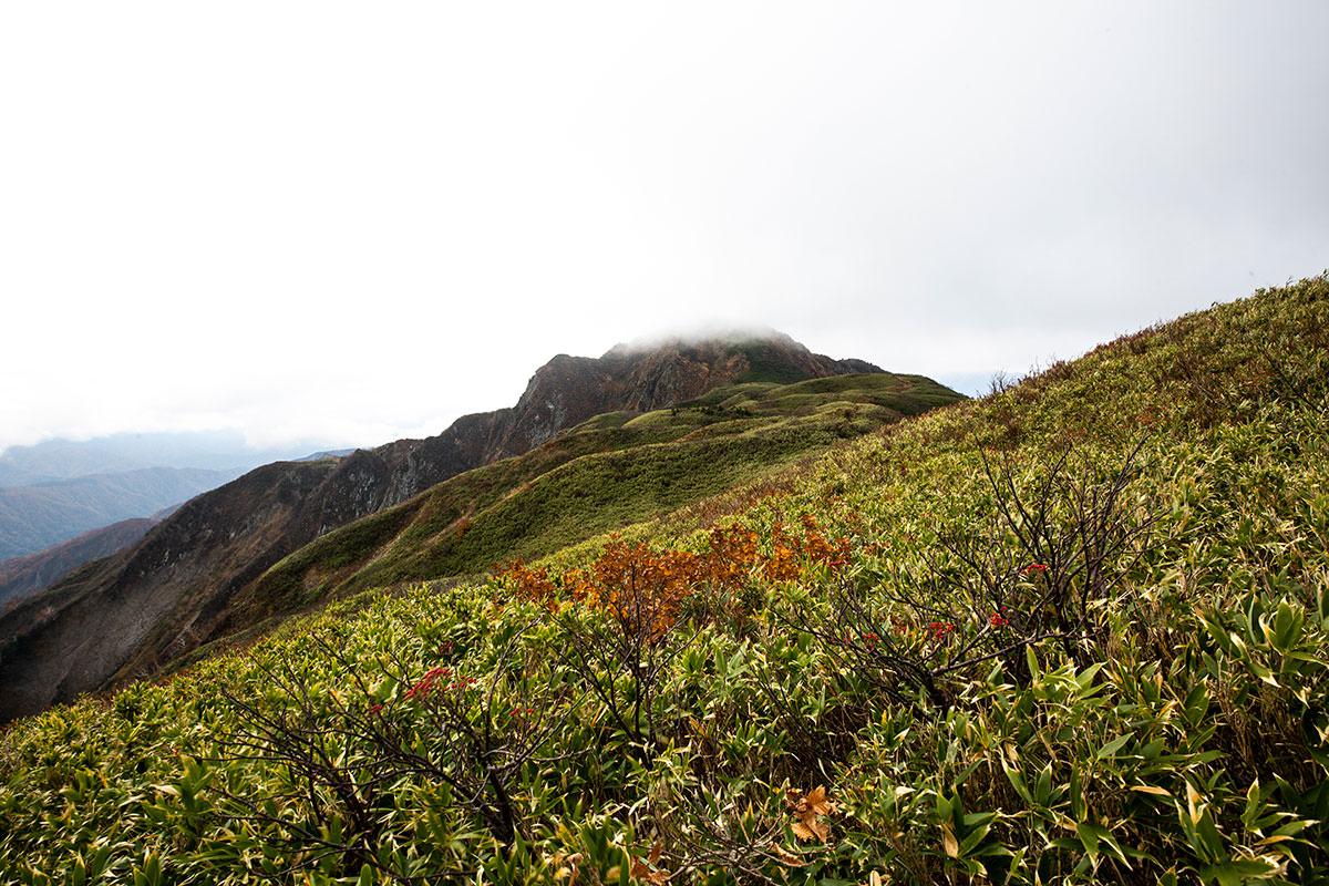 笹平の端から雨飾山山頂を見る