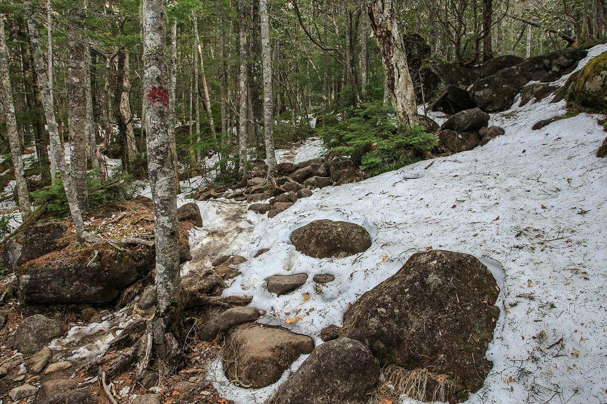 【編笠山 観音平】登山百景-さらに雪も増える