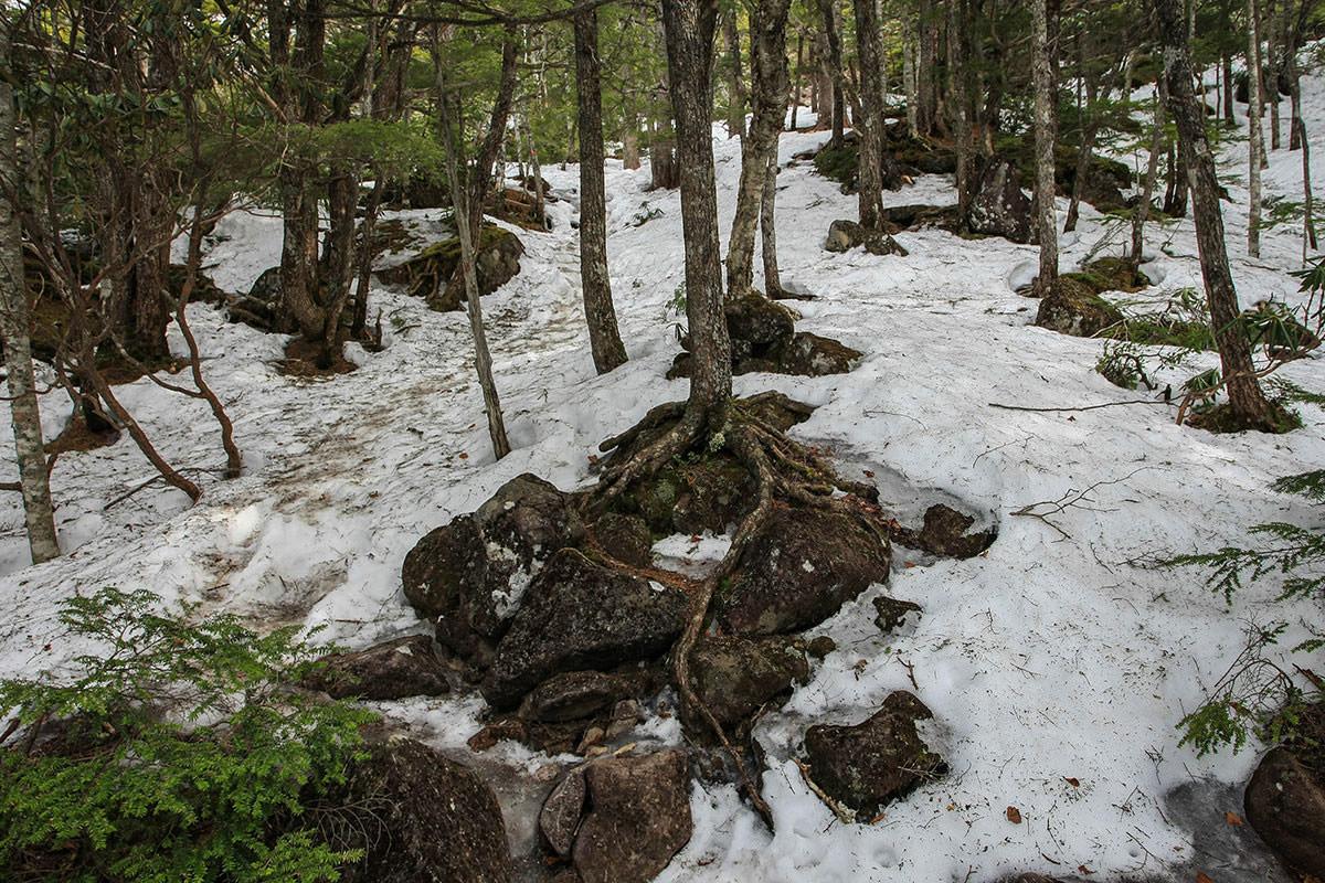 【編笠山 観音平】登山百景-雪の道は勾配もきつくなる