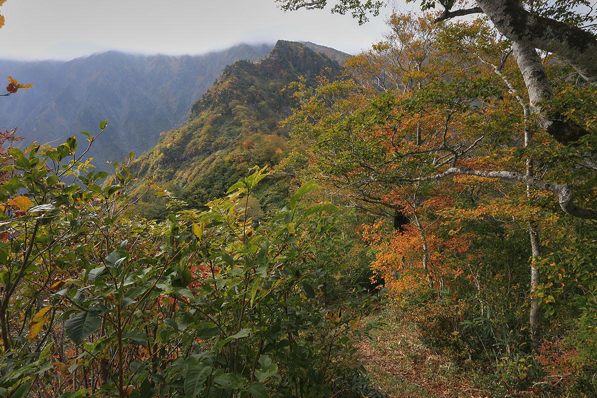 【荒沢岳】登山百景-前嵓が近づいてきた