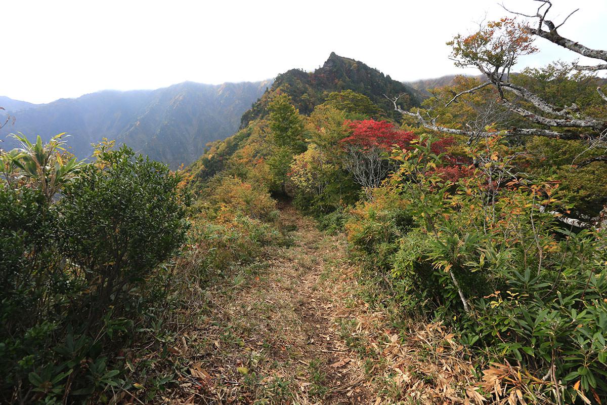 【荒沢岳】登山百景-もうじき岩場