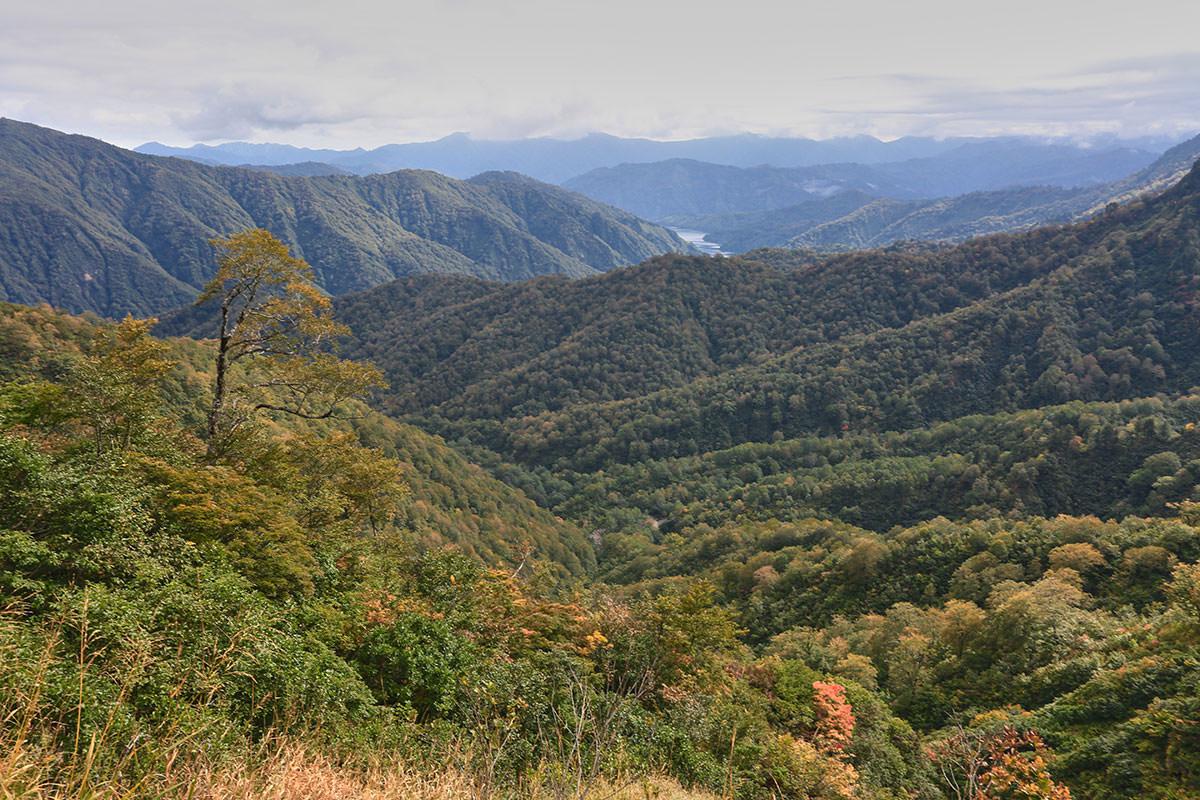 【荒沢岳】登山百景-只見湖が下に