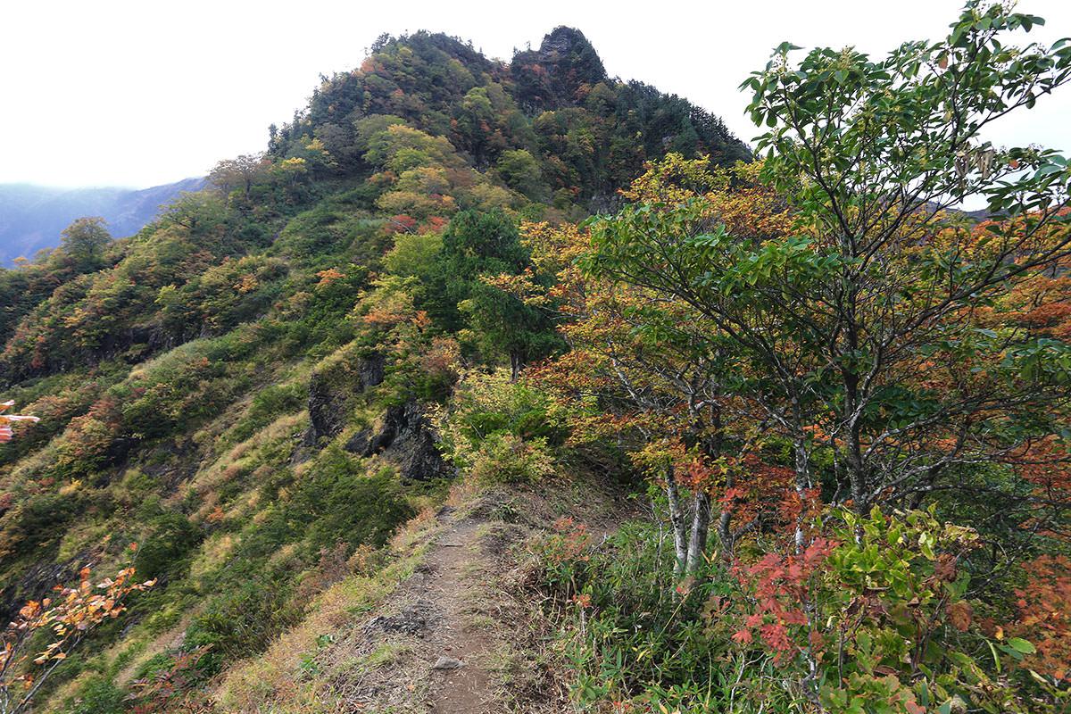 【荒沢岳】登山百景-もう少しで前嵓
