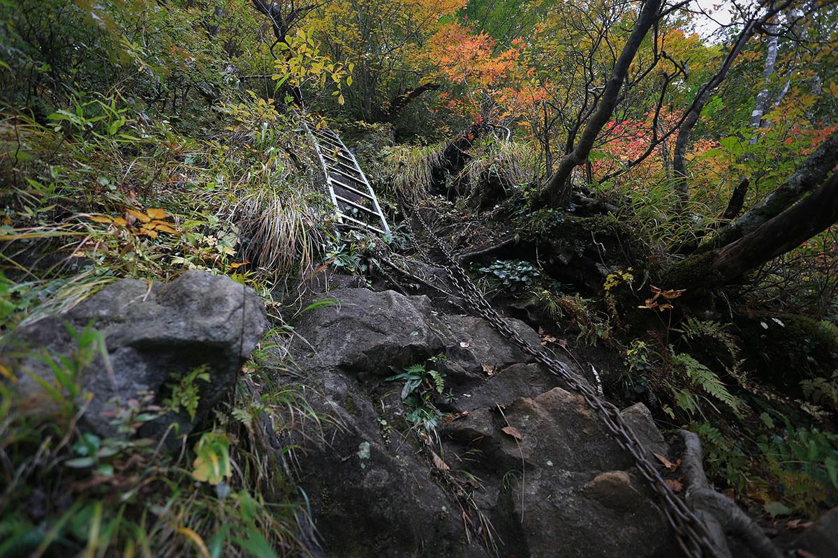 【荒沢岳】登山百景-鎖の次はハシゴ