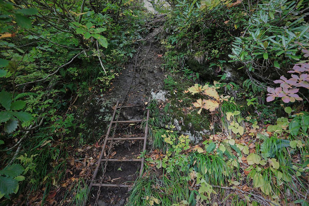 【荒沢岳】登山百景-さらにハシゴ