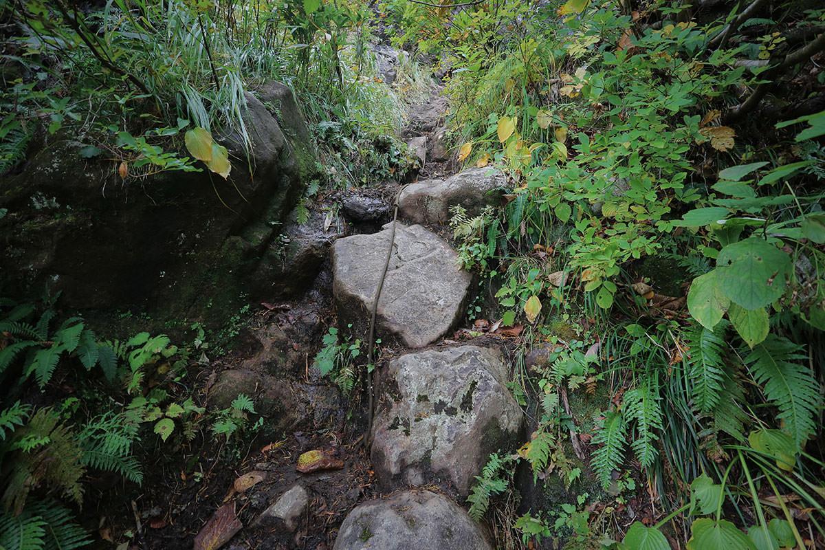 【荒沢岳】登山百景-続いてロープ