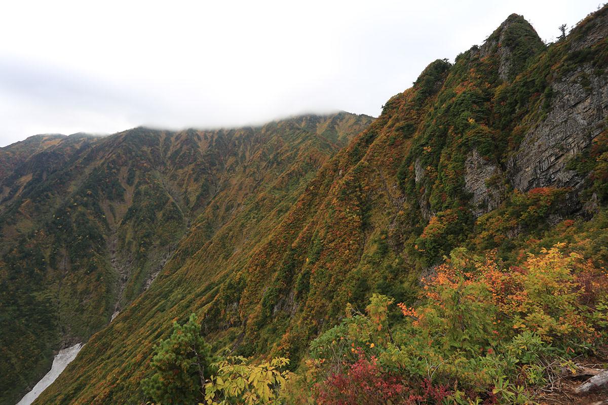 【荒沢岳】登山百景-荒沢岳はそこ