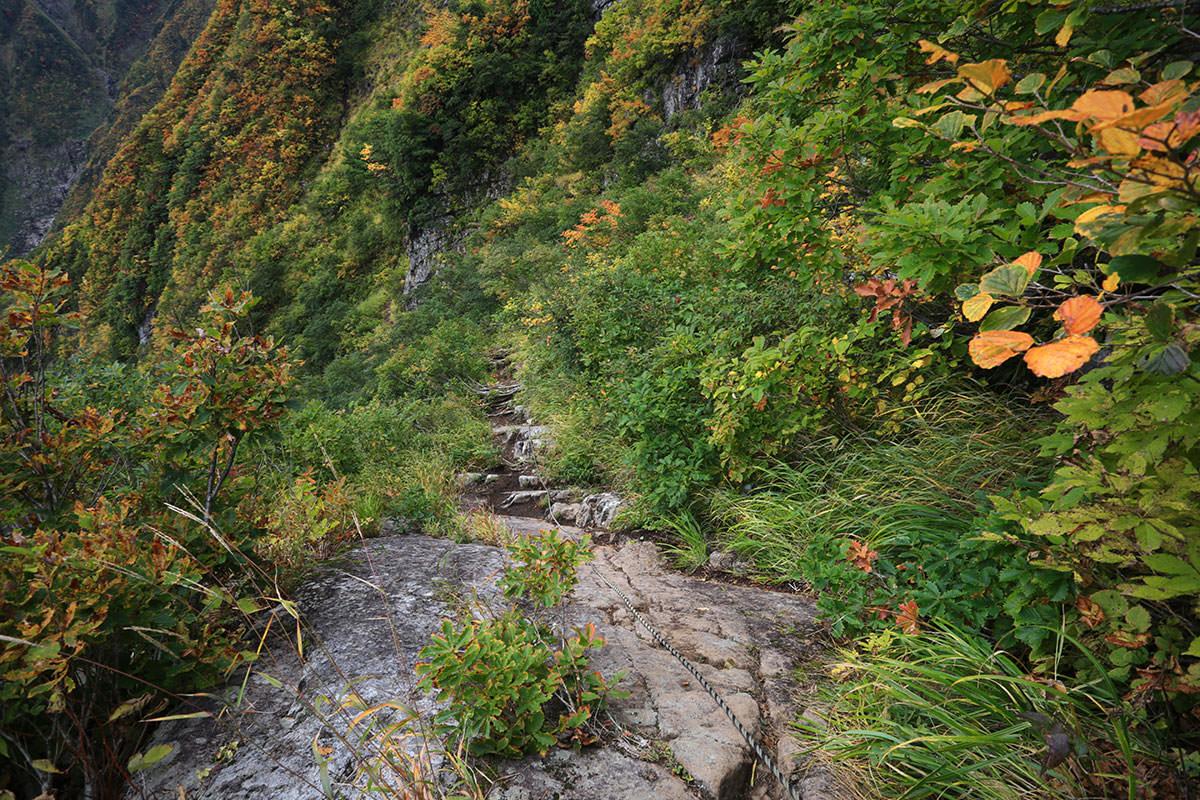 【荒沢岳】登山百景-滑りそう