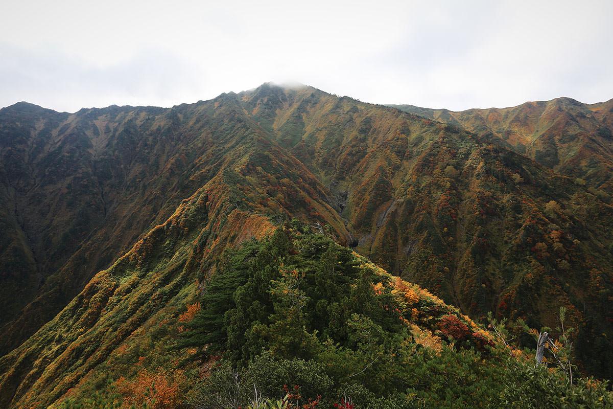 【荒沢岳】登山百景-荒沢岳が近くなった