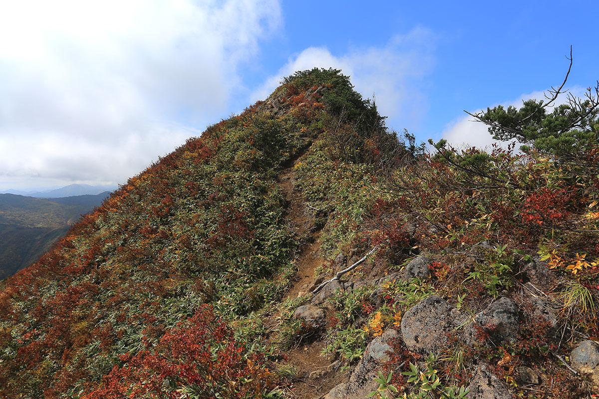 【荒沢岳】登山百景-山頂はこの先