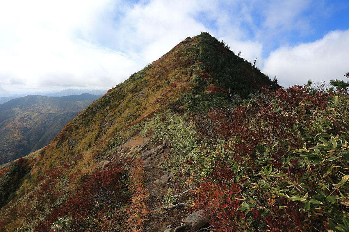 【荒沢岳】登山百景-あの先っぽが荒沢岳山頂