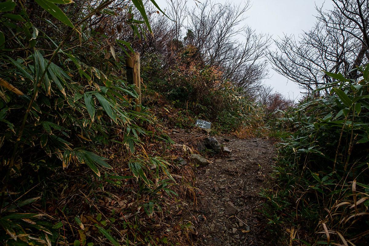 小荒島岳への分岐点