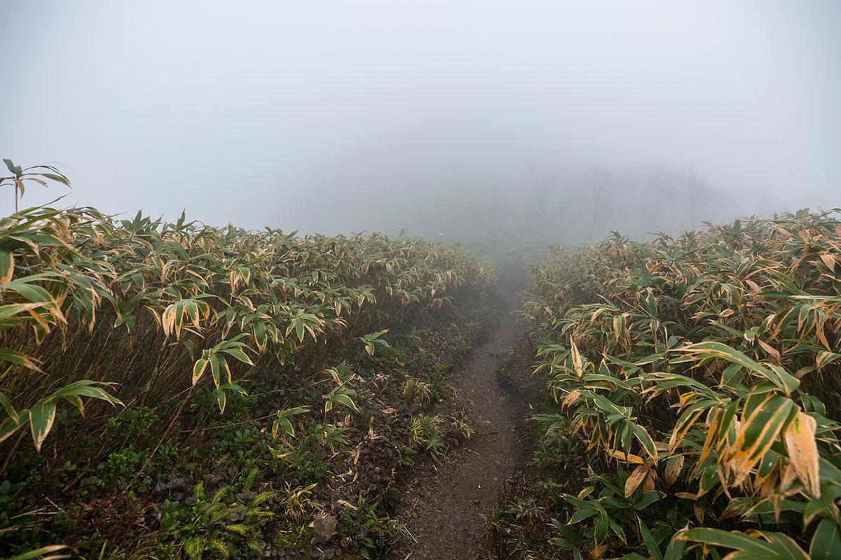 荒島岳山頂へ登る