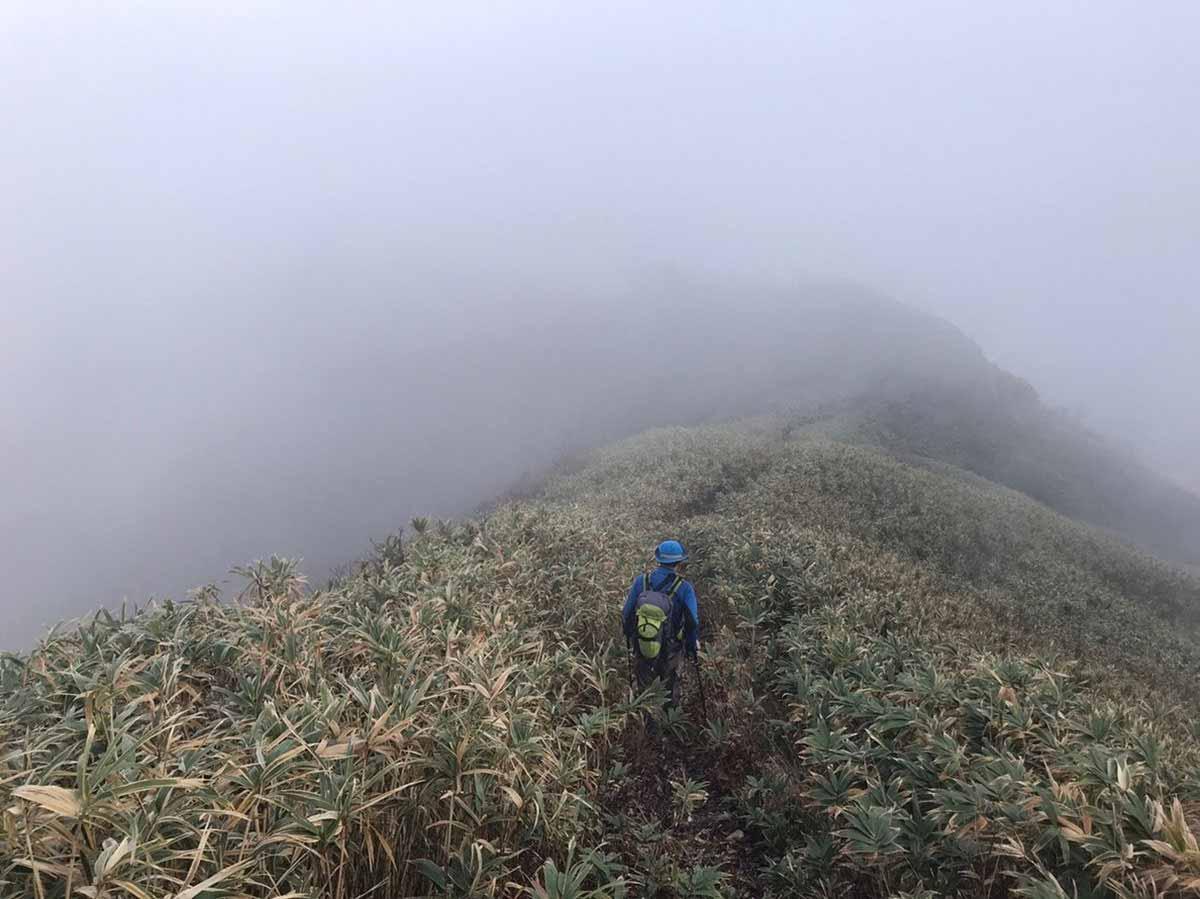 【荒島岳】登山百景-なんだ気持ち良いじゃないか!