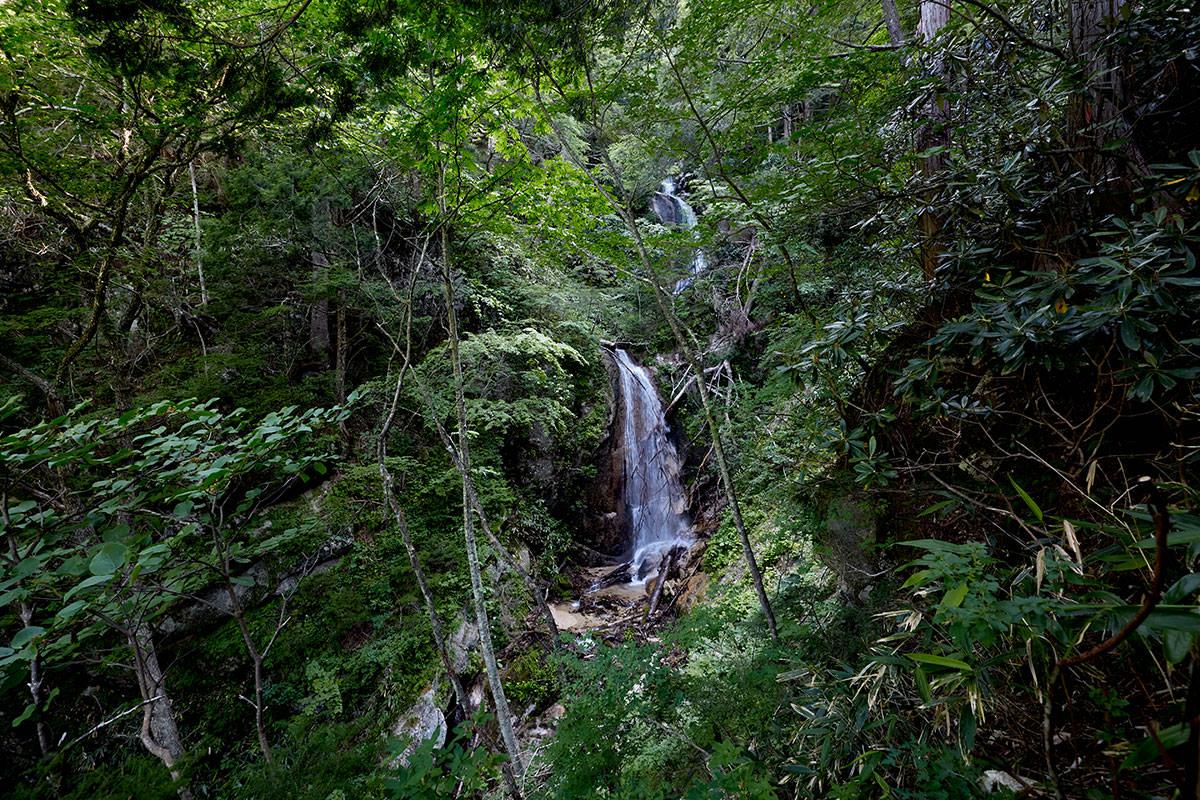 登山道から三段の滝を見に