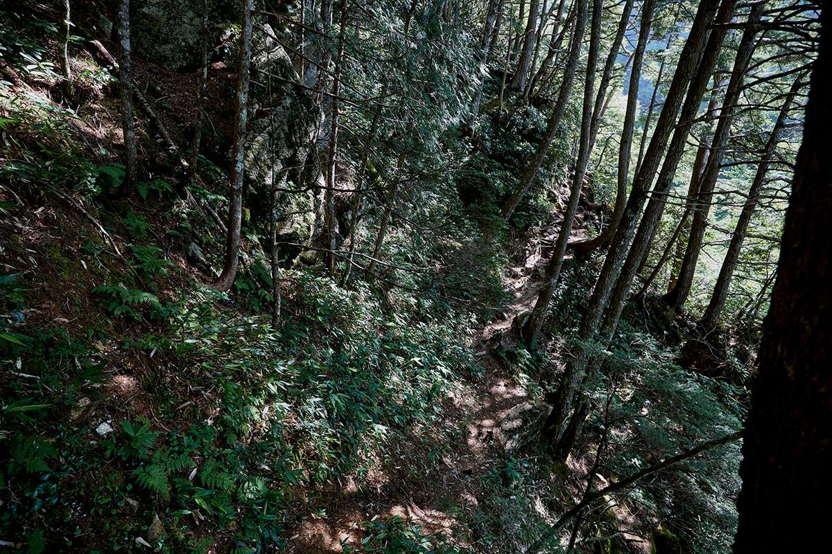 登山道の上に巨岩
