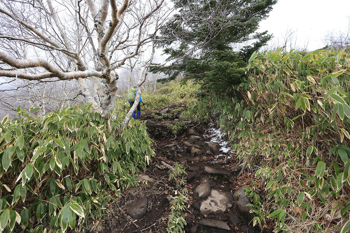 【四阿山】登山百景-雪が少し