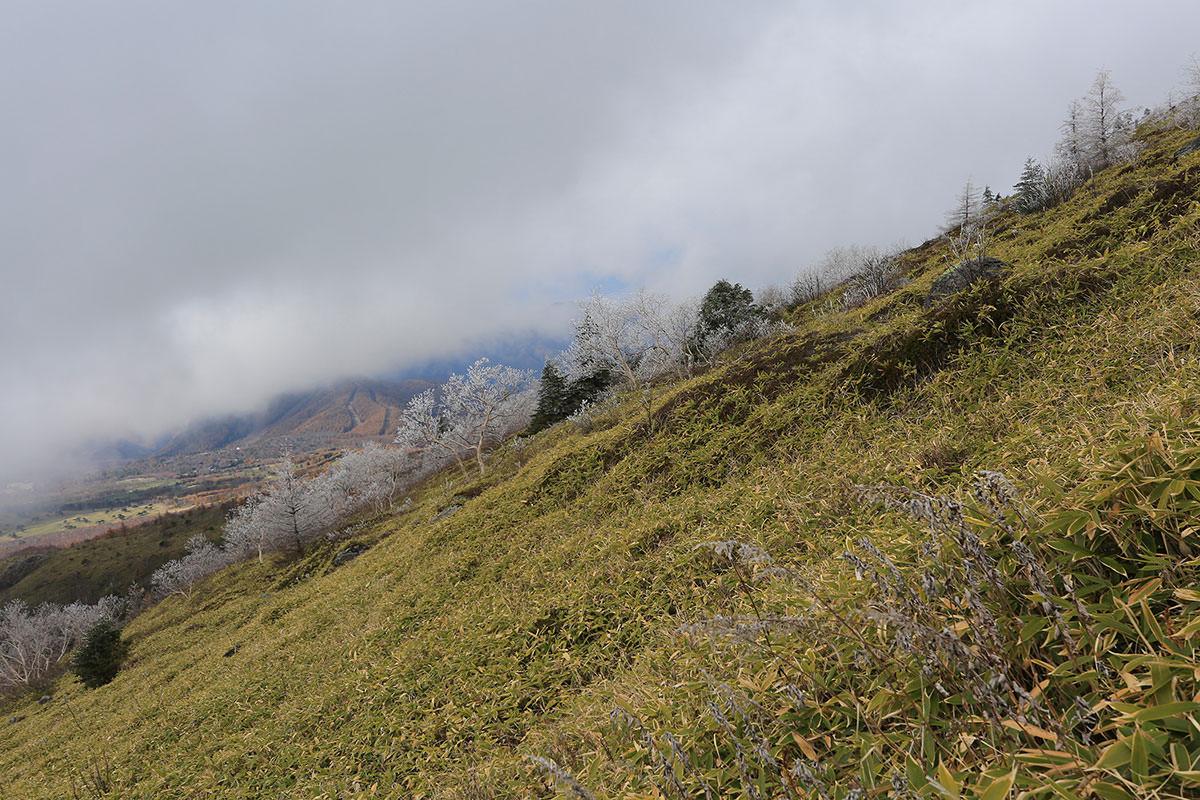 【四阿山】登山百景-横を見る