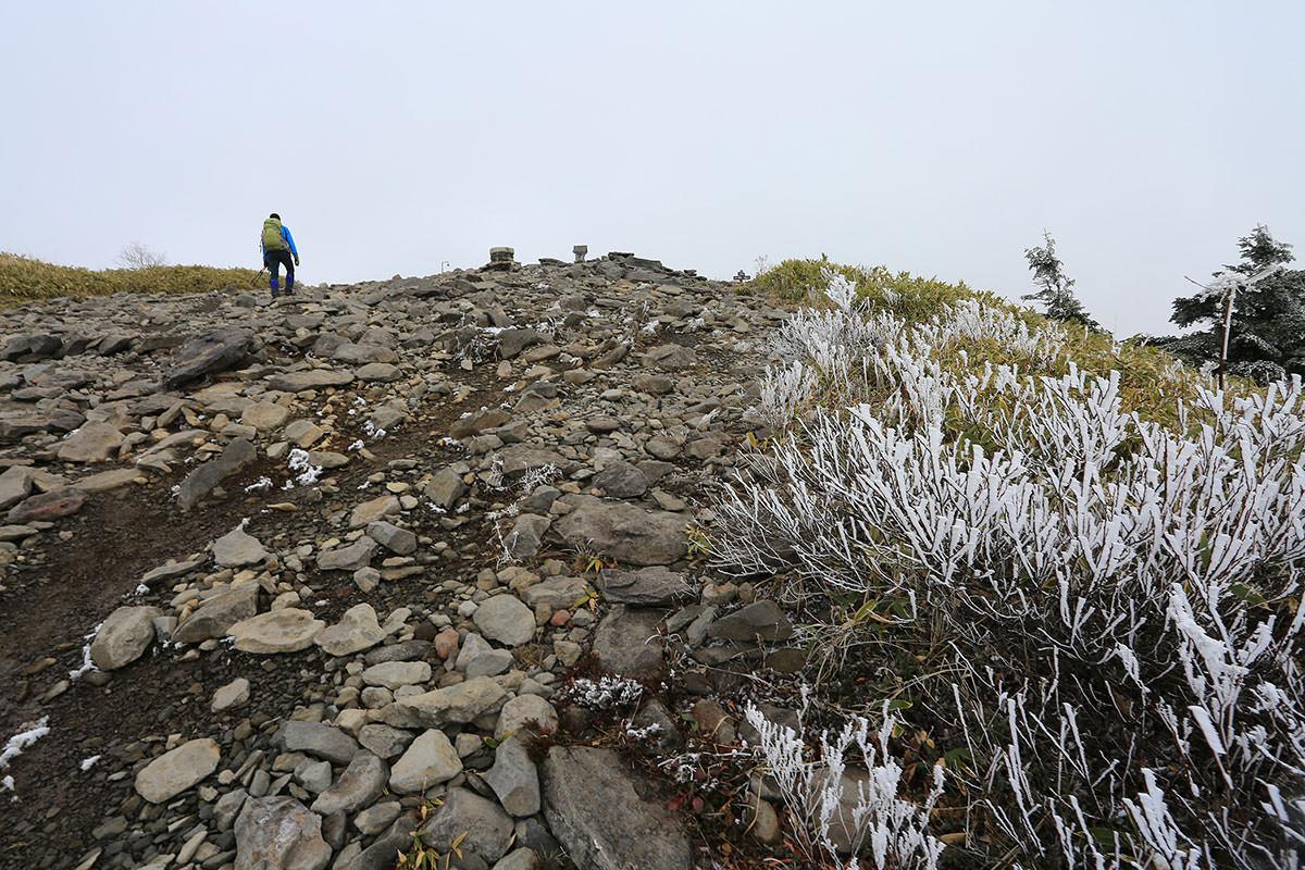 【四阿山】登山百景-山頂が近い