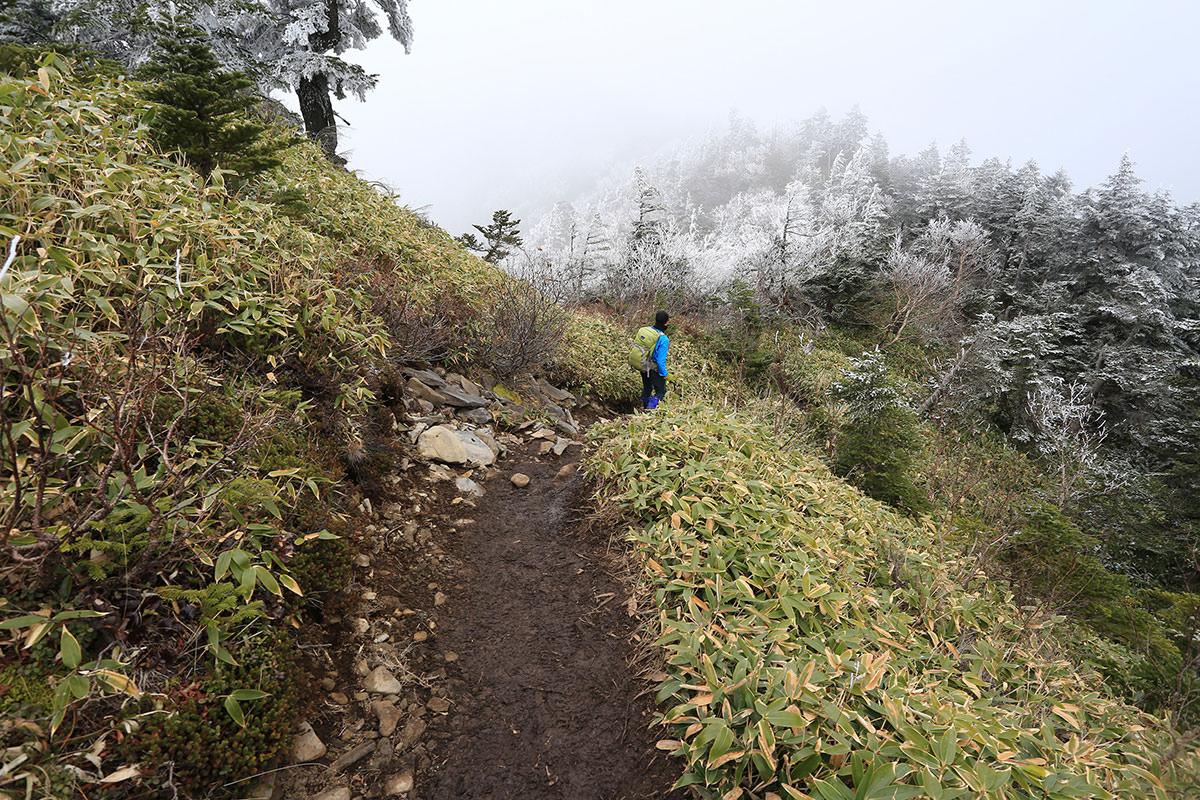 【四阿山】登山百景-山頂は雲の中