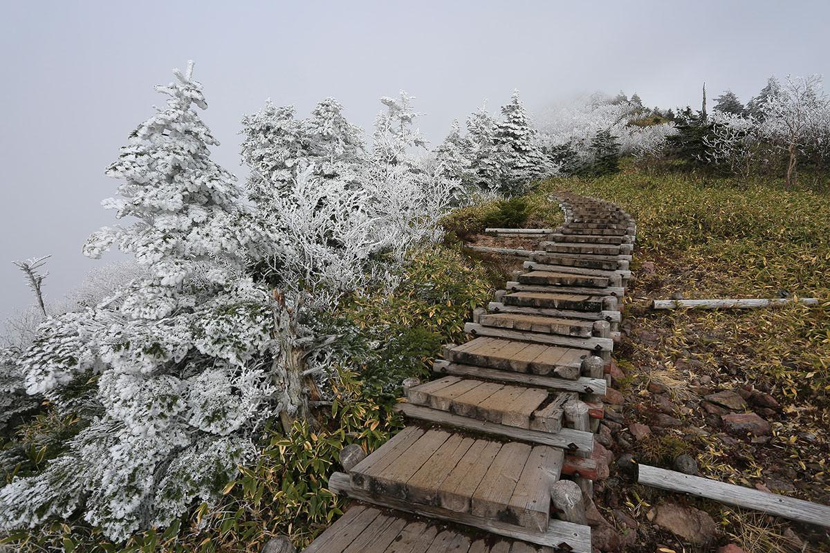 【四阿山】登山百景-階段周りも白い